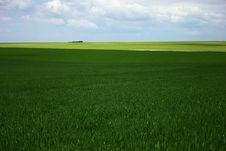 Free Green Field Royalty Free Stock Photo - 1150995