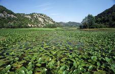 Free Montenegro 2 Royalty Free Stock Photography - 1153477
