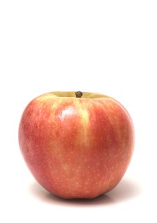 Free Red Apple Tall Stock Photo - 1157430