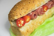 Ham Chili And Lettuce Sandwich Royalty Free Stock Images