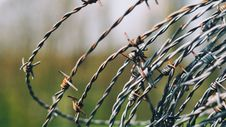 Free Close-Up Photography Of Barbed Wire Stock Photography - 115111012