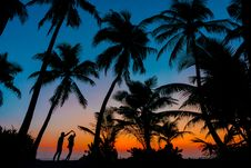 Free Silhouette Photography Of Man And Woman Beside Trees During Sunset Stock Photos - 115111143