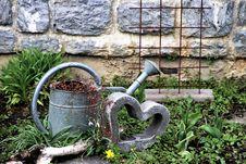 Free Plant, Water, Grass, Garden Stock Photo - 115286950
