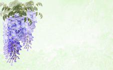 Free Flower, Lilac, Purple, Violet Stock Photos - 115286963