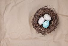 Free Bird Nest, Egg, Nest, Easter Egg Royalty Free Stock Photo - 115315655