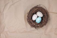 Free Bird Nest, Egg, Nest, Easter Egg Royalty Free Stock Photo - 115315655