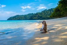 Free Sea, Body Of Water, Sky, Beach Royalty Free Stock Photos - 115316108