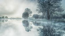Free Water, Reflection, Nature, Winter Royalty Free Stock Images - 115316199