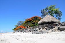 Free Sky, Tree, Beach, Vacation Royalty Free Stock Photos - 115316298