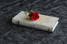 Free Red, Flower, Petal, Rose Stock Image - 115316341
