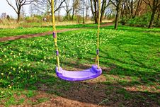 Free Swing, Tree, Outdoor Play Equipment, Grass Stock Photo - 115316610