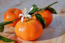 Free Natural Foods, Clementine, Fruit, Tangerine Royalty Free Stock Images - 115316689