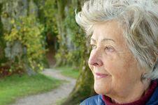 Free Face, Senior Citizen, Tree, Eye Stock Image - 115316761