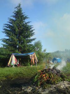 Free Photo Of Pine Tree Leaves Bonfire Royalty Free Stock Image - 115423636