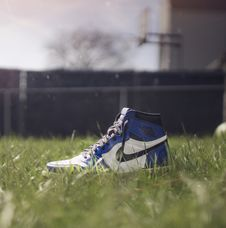 Free Selective Focus Photography Of Air Jordan 1 On Grass Royalty Free Stock Images - 115483529