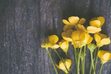 Free Yellow Buttercup Flowers On Grey Surface Royalty Free Stock Photography - 115483667
