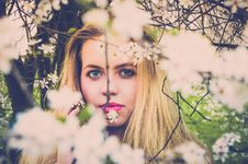 Free Woman With Pink Lipsticks And Blonde Taking Photo With White Petaled Flowers Stock Image - 115483731