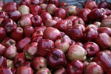 Free Autumn Apples Stock Photo - 11550020
