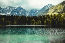 Free Photography Of Fir Trees Near Lake Royalty Free Stock Photography - 115550247