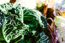 Free Green Vegetable On Basket Royalty Free Stock Photography - 115550307