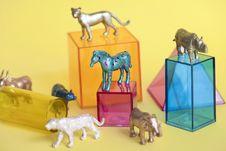 Free Amusement, Animals, Background Stock Photography - 115573102
