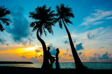 Free Silhouette Photo Of Male And Female Under Palm Trees Royalty Free Stock Images - 115628139