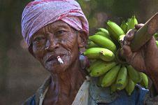 Free Man Wearing Blue Top Holding Bunch Of Unripe Bananas Royalty Free Stock Image - 115628426