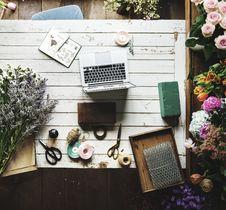 Free Arrangement, Attractive, Bloom Stock Image - 115644211