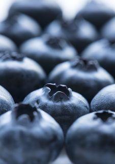 Free Antioxidant, Background, Berry Royalty Free Stock Photo - 115644345