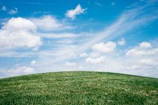 Free Green Grass Field Under White Clouds Royalty Free Stock Image - 115694306