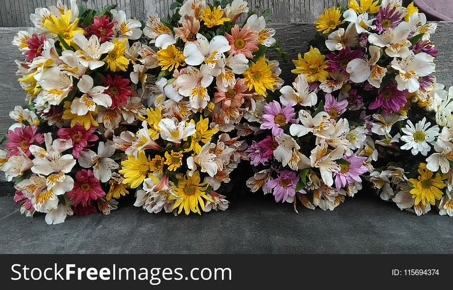Clustered Flowers