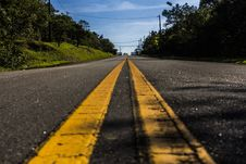 Free Road In Between Green Tree Under White Clouds And Blue Sky Stock Images - 115773704