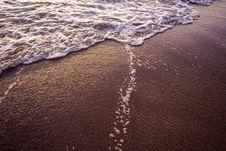 Free Close-up Photo Of Seashore Stock Photo - 115773950