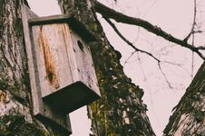 Free Brown Wooden Bird House On Tree Stock Photos - 115773963