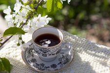 Free Coffee Cup, Flower, Tableware, Tea Stock Image - 115806671