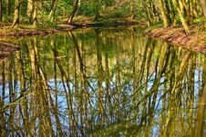 Free Water, Reflection, Nature, Nature Reserve Royalty Free Stock Images - 115806989