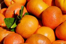 Free Fruit, Produce, Clementine, Citrus Royalty Free Stock Image - 115807106