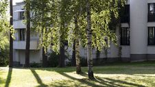 Free Birch Trees Beside The White Building Royalty Free Stock Photos - 115844328
