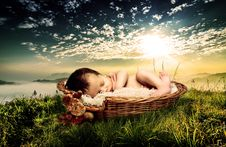 Free Photograph, Grass, Photography, Romance Royalty Free Stock Images - 115877309