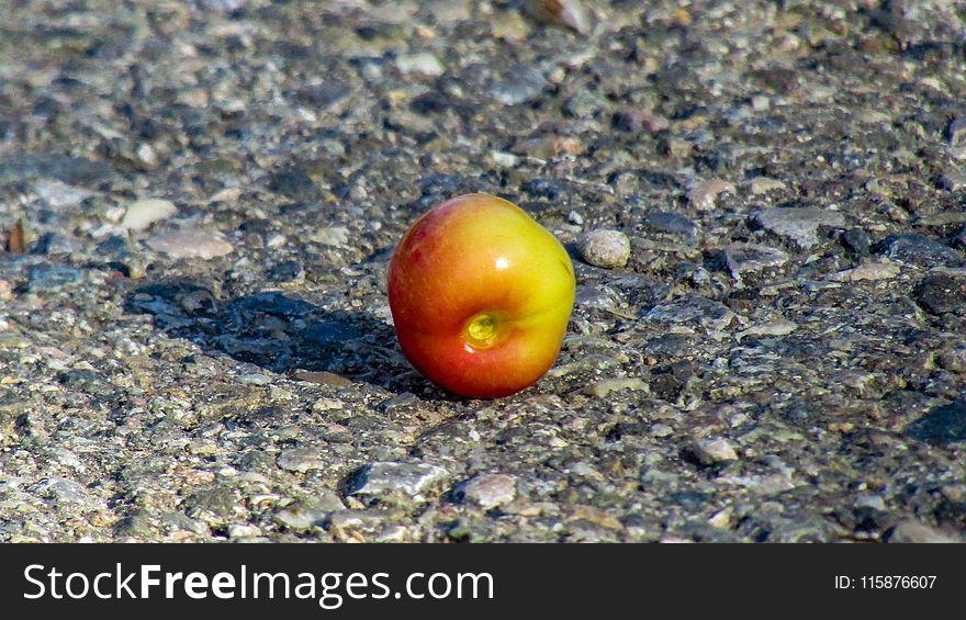 Tomato, Produce, Fruit, Potato And Tomato Genus