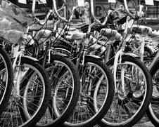 Free Grayscale Photo Of Bicycles Royalty Free Stock Images - 115913609