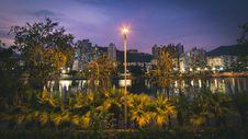 Free Yellow Light Post Near Plants Royalty Free Stock Photography - 115977017