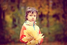 Free Boy Wearing White And Red Zip Jacket Holding Brown Maple Leaf Stock Image - 115977031