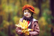 Free Boy Wearing Brown Leather Jacket Holding Yellow Leaves Stock Photography - 115977052