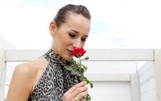 Free Girl With Red Rose Stock Photo - 1162700