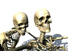 Free Skelton 14 Stock Photography - 1164972
