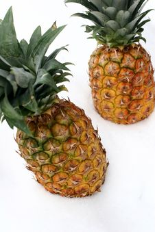 Free Ananas On Snow Stock Photo - 1165150