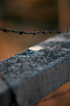 Free Barbed Wire Fence Royalty Free Stock Image - 1165706