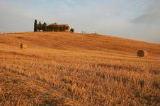 Free Toscana Royalty Free Stock Photography - 1168537