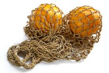 Free Two Oranges In String-bag Royalty Free Stock Photography - 1169047